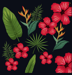 Hibiscus leaf palm tropical wild vector