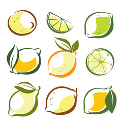 set of lemons and lime symbols in sketch style vector image