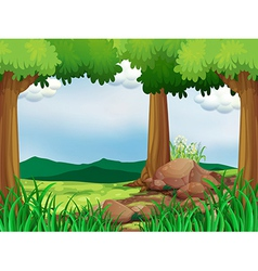 A green forest with rocks vector