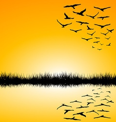 Landscape with a lake and birds flying vector