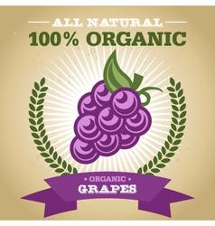 Organic grapes vector