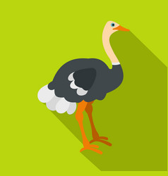 ostrich icon flat style vector image