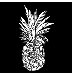 Hand drawn set of ripe pineapples vector