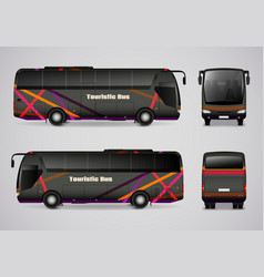 touristic bus from all sides vector image