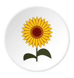 Sun flower icon circle vector