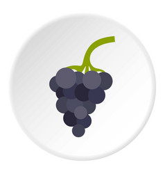 Bunch of grapes icon circle vector