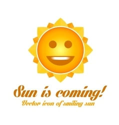 icon of smiling sun vector image