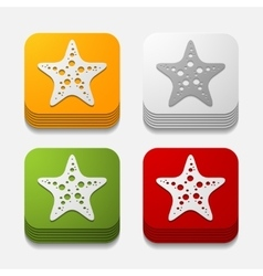 square button starfish vector image