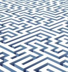maze illustration vector image