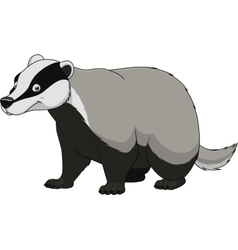 Adult funny badger vector