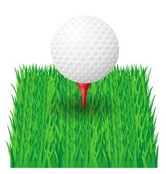 golf 23 vector image vector image
