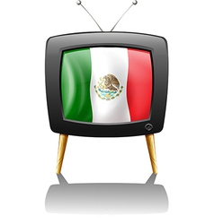 The flag of Mexico inside the TV screen vector image vector image