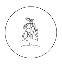 Eggplant icon outline single plant icon from the vector
