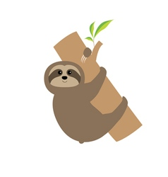 Sloth hugs tree branch cute cartoon character wild vector