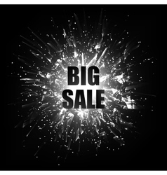 Big sale Sale banner template design vector image vector image