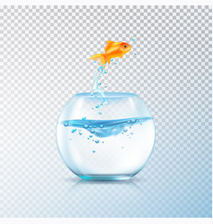 Boiling fish aquarium composition vector