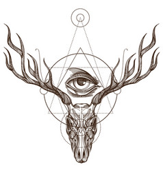 Sketch of deer skull and all seeing eye outline vector