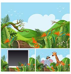 mountain scenes with wild animals vector image vector image