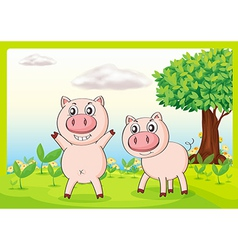 Smiling pigs vector image