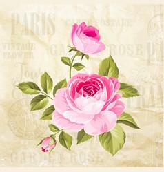 rose flowers garland vector image