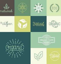Set of natural organic vegan badges vector