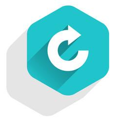 flat arrow sign reset icon hexagon button vector image vector image