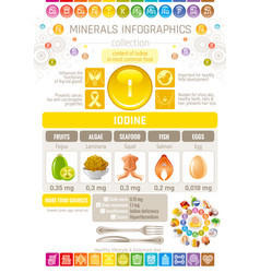 Iodine mineral supplements rich food icons vector