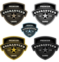 Shield label vector image