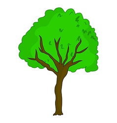 tree5 vector image