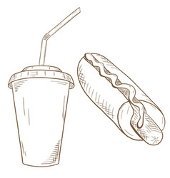 hot dog and drink in disposable paper cuphand vector image