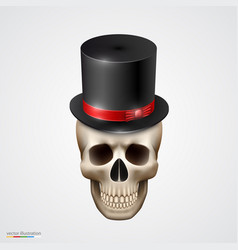 human skull isolated with hat vector image vector image