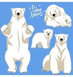 Polar bears collection vector
