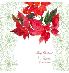 Background with bouquet of red poinsettia vector