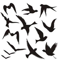 Set of flying birds vector