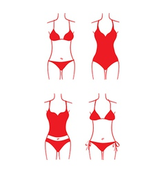 Ladies swimsuit vector