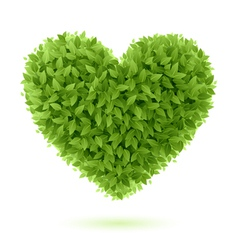 Heart symbol of green leaves vector image