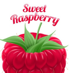 Poster sweet raspberry vector