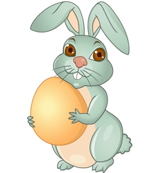 Easter rabbit cartoon vector