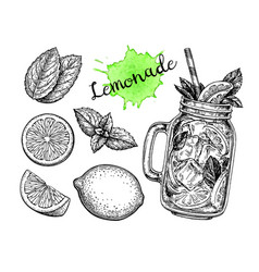 lemonade and ingredients vector image vector image