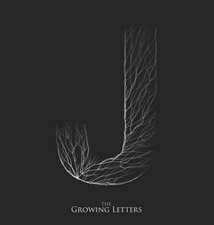 Letter j of branch or cracked alphabet j vector
