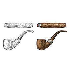 pipe vintage engraving color vector image vector image
