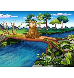 Tree Bridge Bear vector image vector image