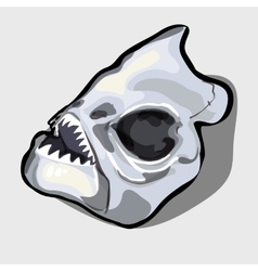 Cranial bone fish head ancient toothy creatures vector