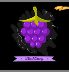 blackberry cartoon icon colorful vector image vector image