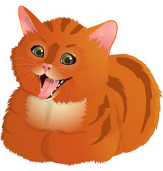 ginger laughing cat vector image