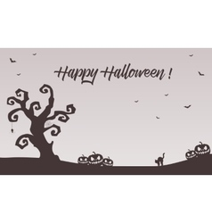 Halloween backgrounds pumpkins cat bat vector