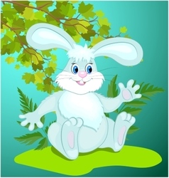 Funny cartoon bunny vector