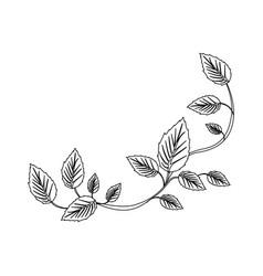 Black silhouette of creeper plant vector