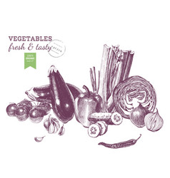 hand drawn vegetables border vector image vector image