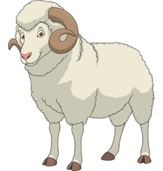 Adult funny ram vector